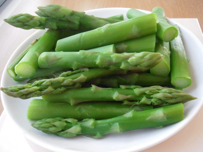 pickled bamboo the healthy benefits of eating bamboo shoots healthy builderz