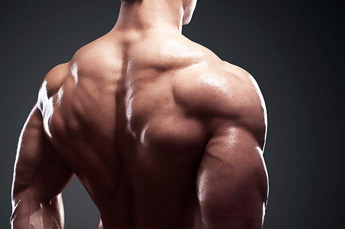 Trouble Free Exercises For Defining Those Trapezius Muscles